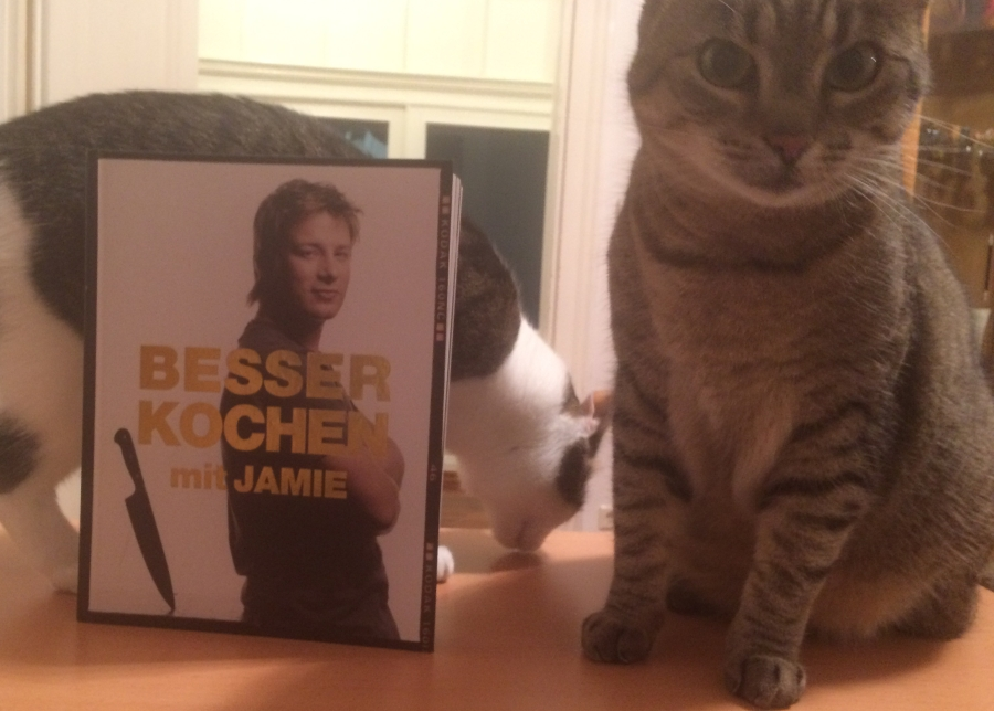Ccb 9 Ragout Mit Jamie Koch Buch Katz